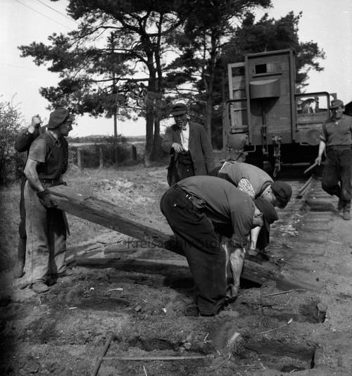 Demontage der Gleisanlagen in Lütjensee, 1952