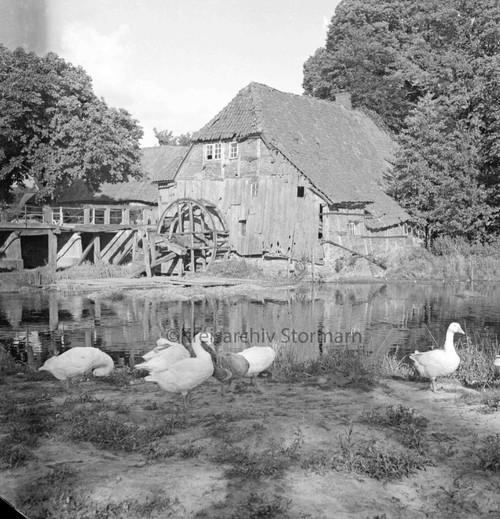 Außenaufnahme der Mühle, ca. 1952