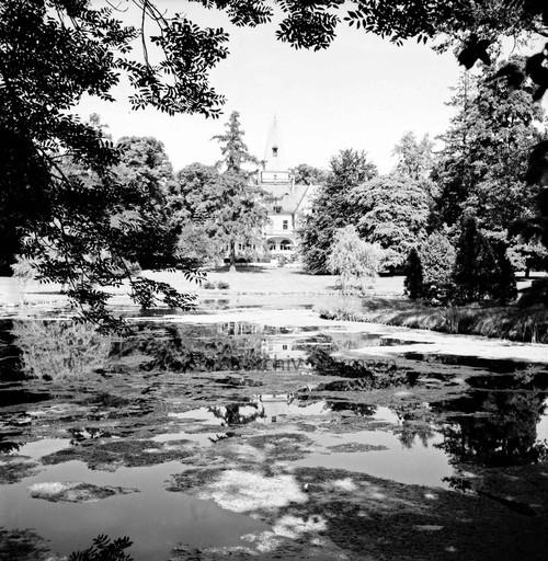 Blick über den Teich, 1969