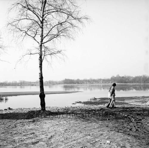 Hoisdorfer Teiche, 1972