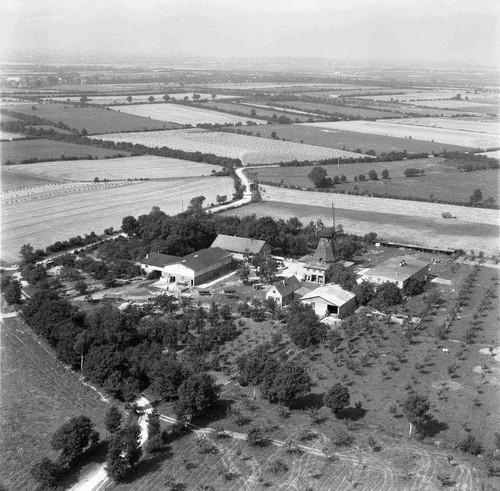 Luftaufnahme des Gebäudeensembles, 1954